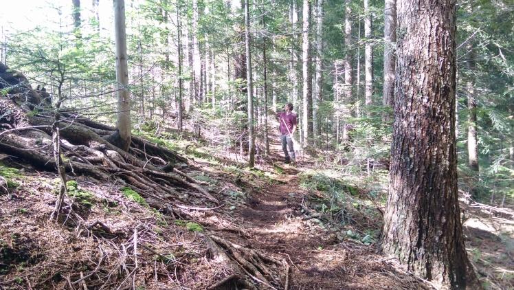 trail building in luce slovenia singletrack mountain bike